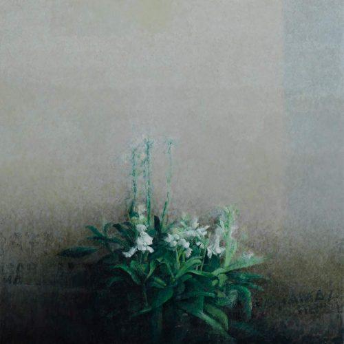 Planta · Óleo/Tabla · 50 x 50 cm