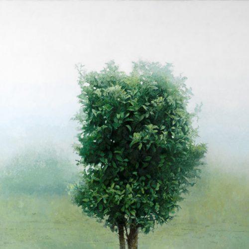 Naranjo · Óleo/Lienzo · 100 x 150 cm